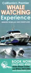 Harbor Breeze Yacht Charters