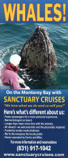 Sanctuary Cruises Whale Watch