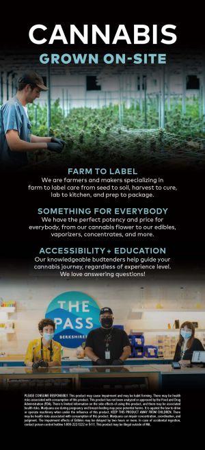 The Pass brochure thumbnail