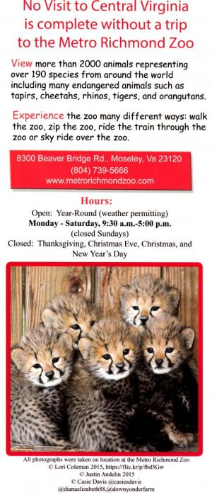 Metro Richmond Zoo brochure thumbnail