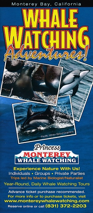 Princess Whale Watch Adventures