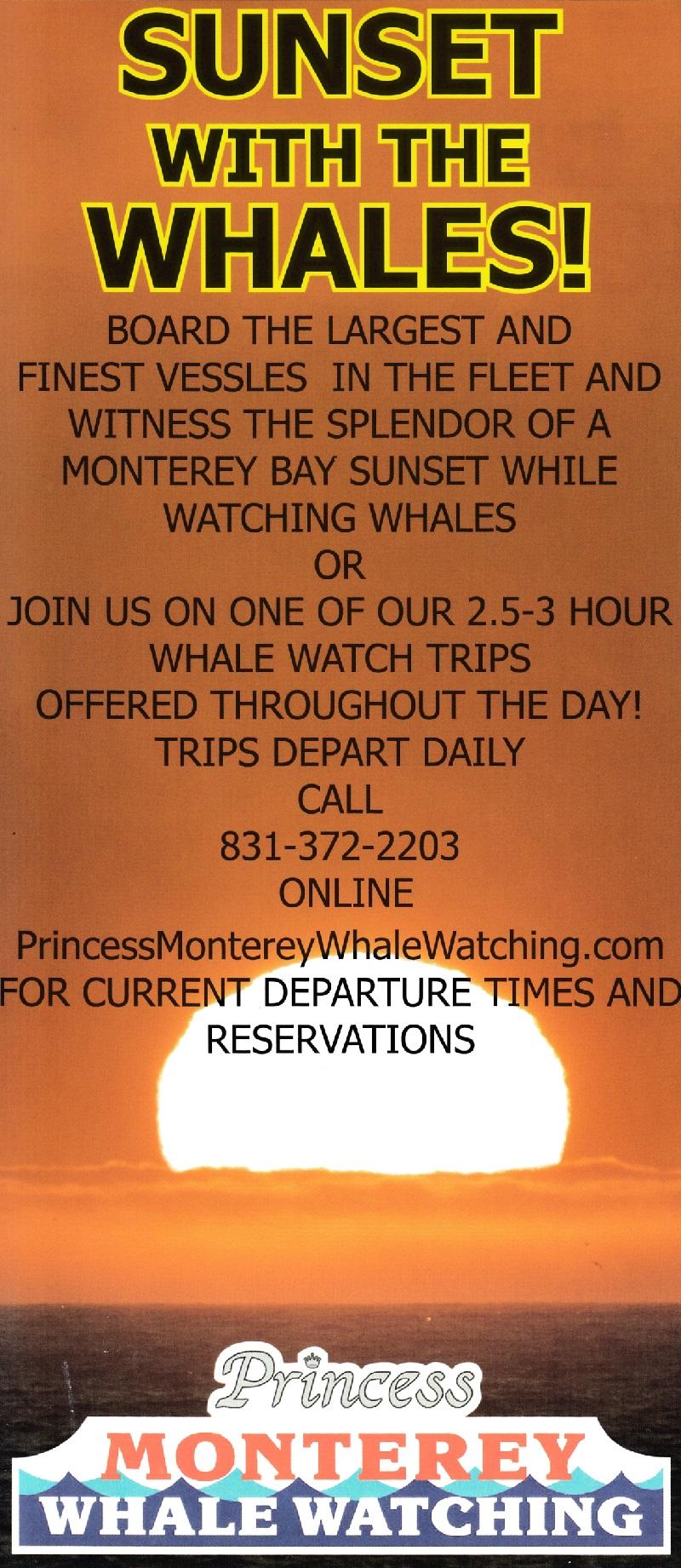 Princess Sunset Cruises