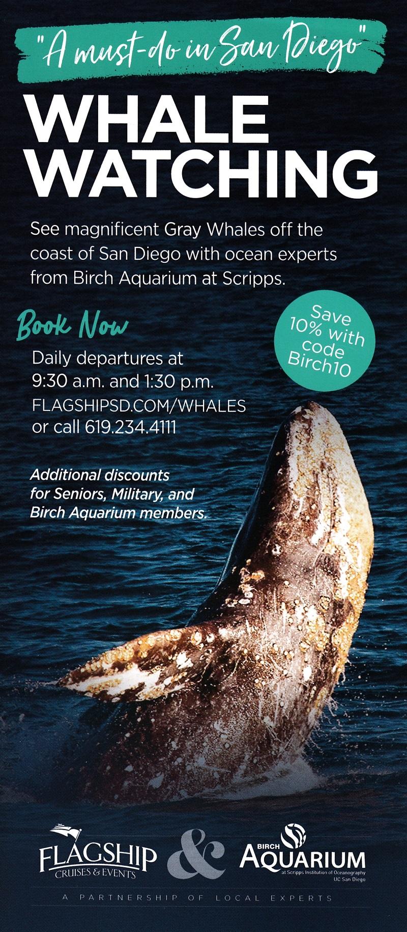 Birch Aquarium - Whale Watch
