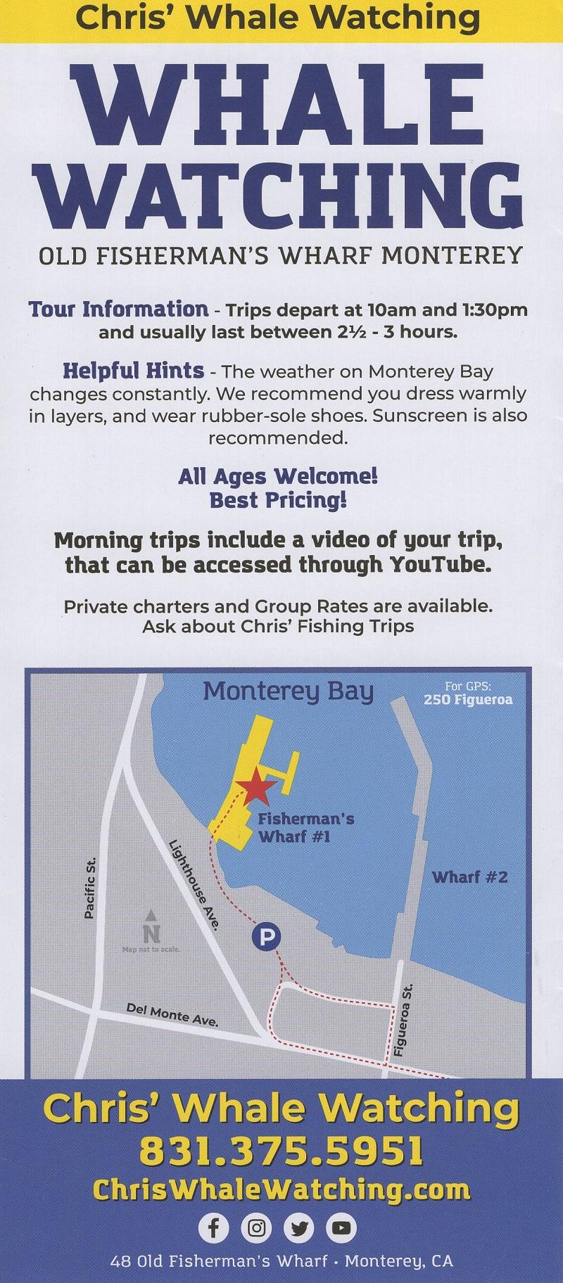 Chris' Whale Watching brochure thumbnail