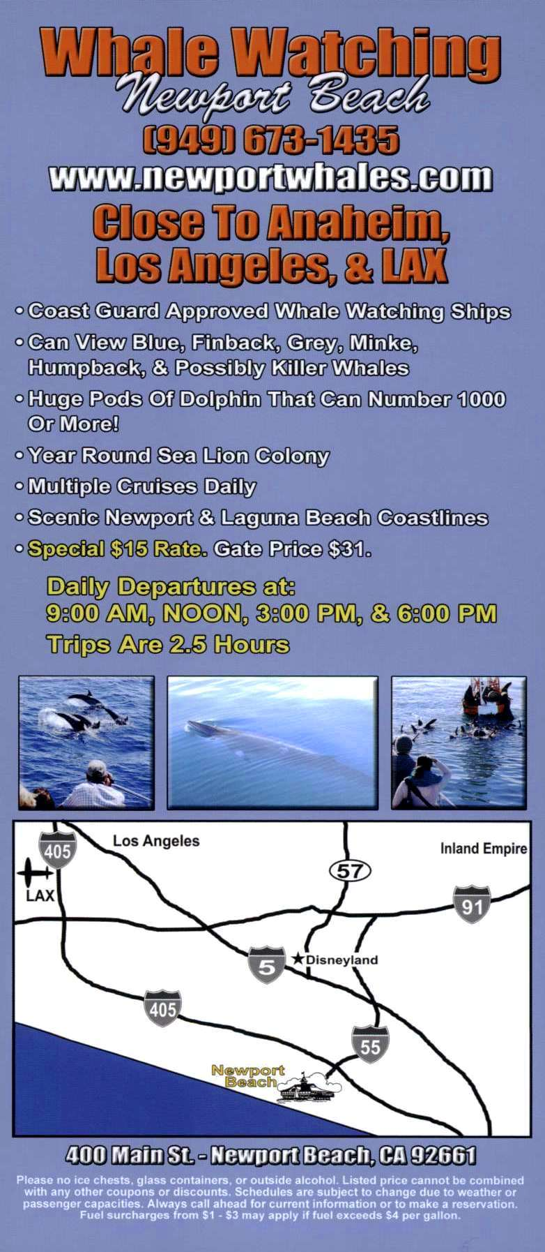 Newport Landing Whale Watching Back Brochure Cover