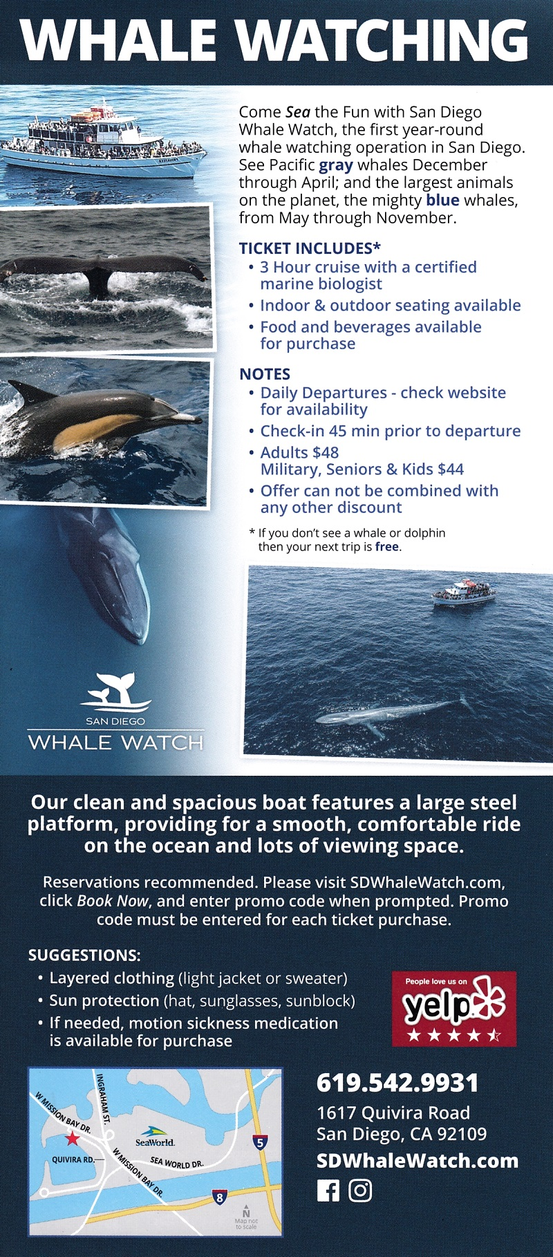 San Diego Whale Watching brochure thumbnail