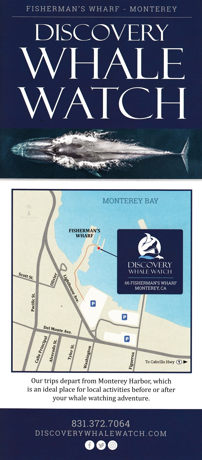 Discovery Whale Watch brochure thumbnail