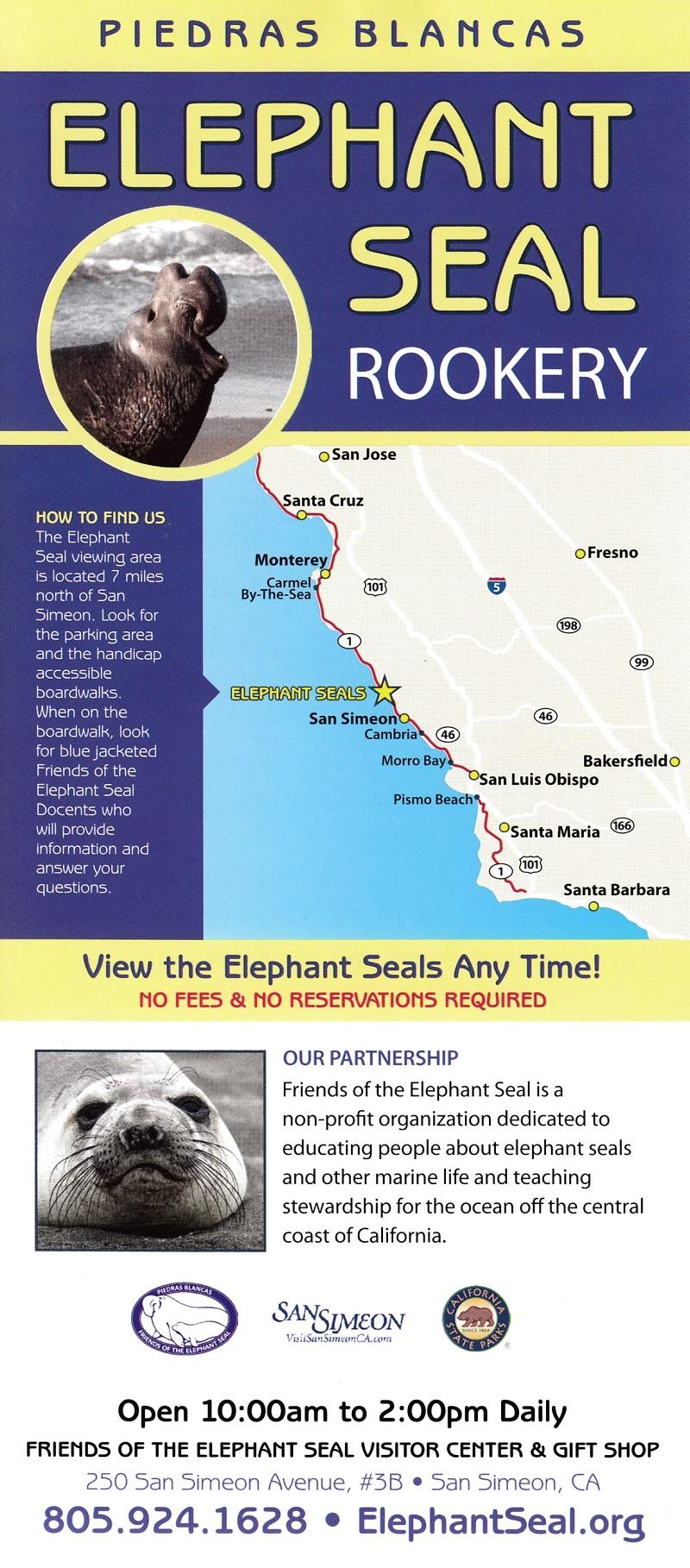 Elephant Seals brochure thumbnail
