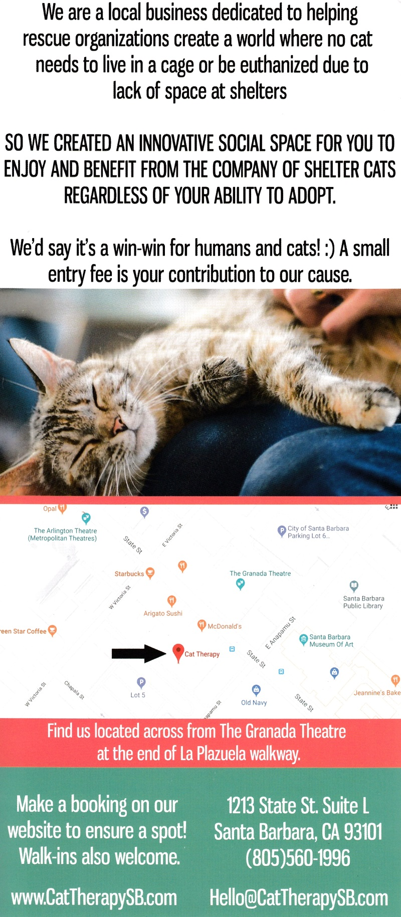 Cat Therapy brochure thumbnail